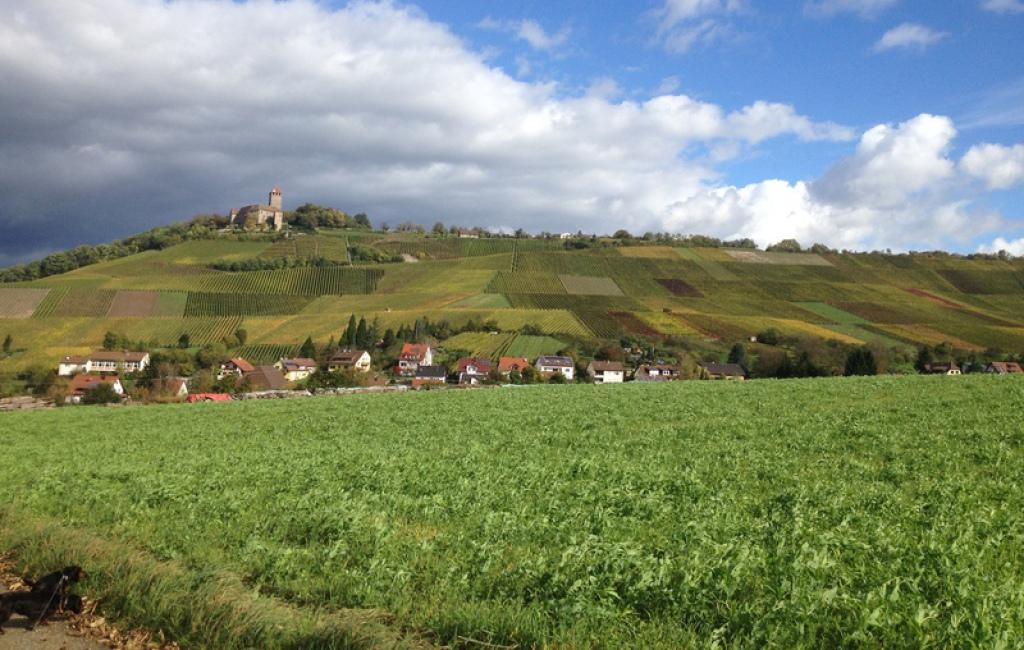 Burg Lichtenberg, Gemarkung Oberstenfeld